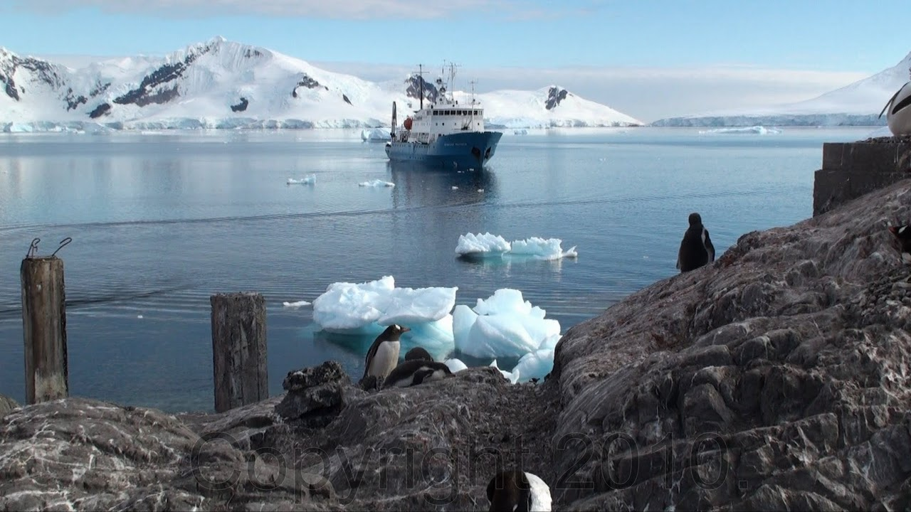 Antarctica.2010.Grabbed.Frame.1