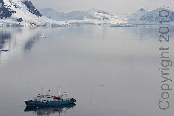 Antarctica.2010.IMG_3119