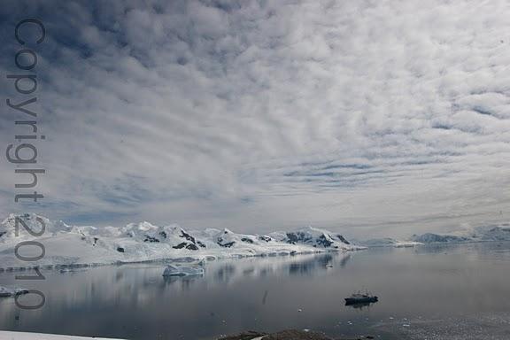Antarctica.2010.IMG_3126