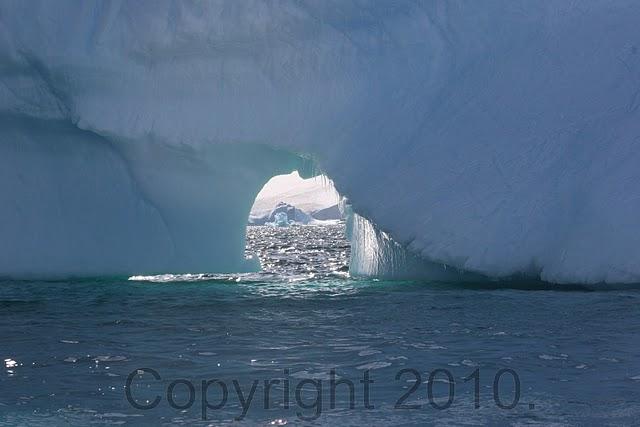 Antarctica.2010.IMG_3234