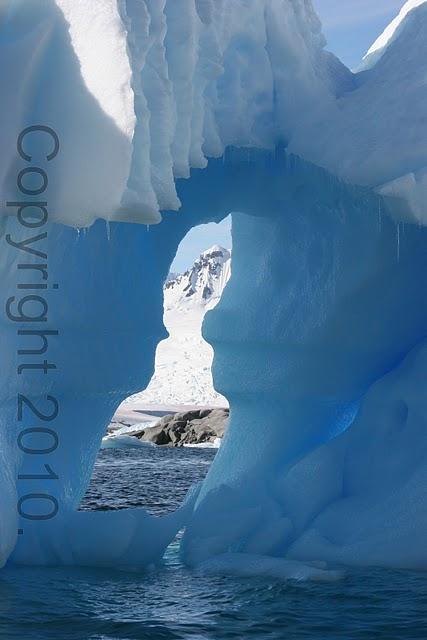 Antarctica.2010.IMG_3251