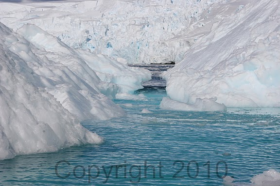 Antarctica.2010.IMG_3412