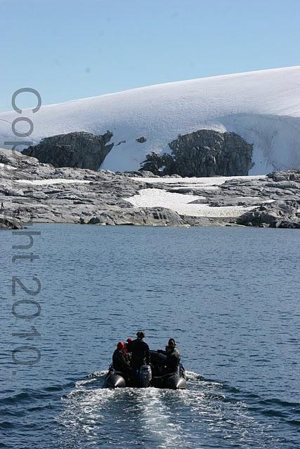 Antarctica.2010.IMG_3529