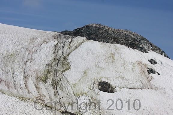 Antarctica.2010.IMG_7641