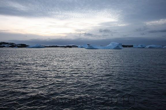 Antarctica.2010.IMG_7868